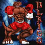 Dlaigo Has Entered the Ring by DigiDayDreamer