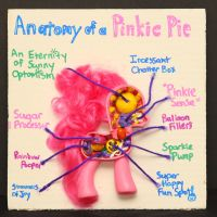 Anatomy of a Pinkie Pie by TwistedPonies