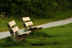 Two benches in the park by steppelandstock