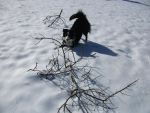 Jana Playing In The Snow by SparklesKissesChuzzy