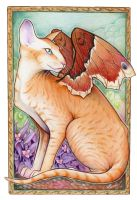 Winged Peterbald by aeryael