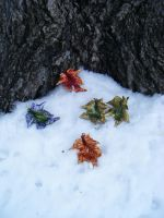 Custom Fantasy Leather Leaves Set of Five by Arexandria