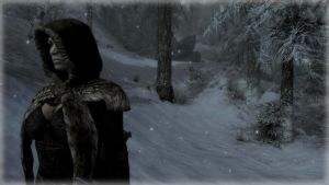 Skyrim Solace IV by Solace-Grace
