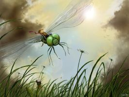 Riding The Dragonfly by jerry8448