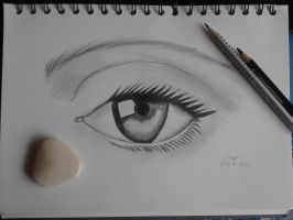 Realistic Eye by kissychaan