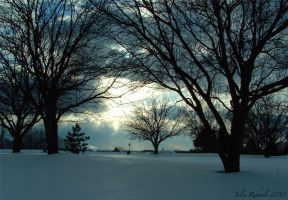 Wintry Scene by jewels4665