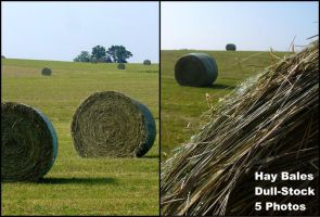 Hay Bales by dull-stock