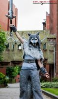 ALCON The Great Grey Wolf Sif 4 by TPJerematic