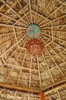 Palm Thatch Ceiling by morbiusx33