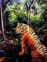 tiger in the jungle2 by MasterGunyer