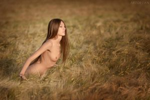 Nature Love by artofdan70