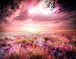 background stock48 by Sophie-Y