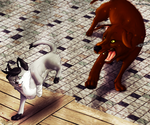 Game of Cat and Mouse by HMS-ArtHound