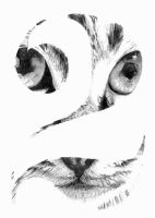 cat typogragphy by dawn-is-dead