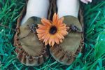 Mockies and Daisies by stephie2007