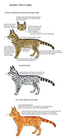 Tabby tutorial by JocastaTheWeird