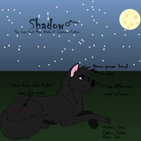 Shadow's Ref Sheet by M0N0KUMA
