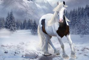Gypsy Winter Wallpaper by jesuslover488448