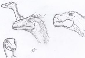 T-Rex and Raptors and Compys Oh My! by ConstantM0tion