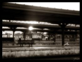 Station scene by thomasdelonge