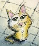 Yellow Cat by Starshrouded