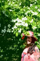 Mrs A* With Single Matching Dogwood Bloom by aegiandyad