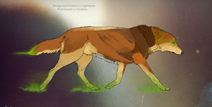 CLOSED ~ Elemental Wolf Adoptable by Animal-Canine-Adopts