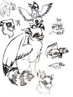Coon Griff Sketches by DeannaRae