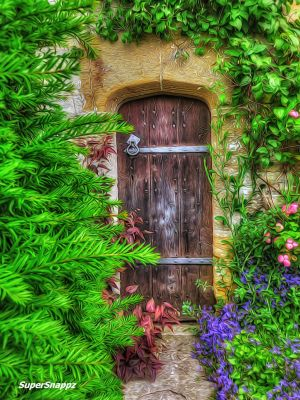 The Old Wooden Gate by supersnappz16