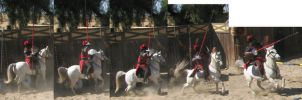 Red Knight Joust Pack 2 by tursiart