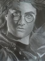 Harry Potter and The Goblet of Fire by Pick45Art