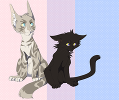 Feathertail and Crowpaw by TobyKitten