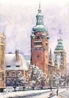 Szczecin in snow by CyjanekPotasu