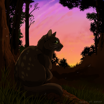 Frogpaw by Spirit-Of-Alaska