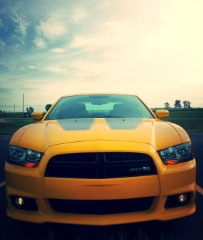 Dodge Charger SRT Super Bee! by Lactate10MileRun