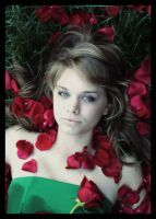 Roses Red III by fretting