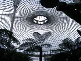 Kibble Palace Glasgow by printsILike