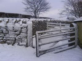 Snowy Gate Stock by dustysweet