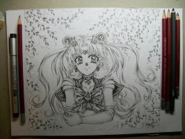 Bishoujo Senshi Sailor Moon Crystal Fever by ArtTreasure