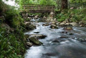 Glendalough river by RickMunish