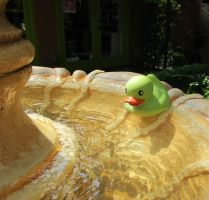 rubber duckie in the fountain by WisteriasWeb