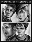 triwizard champions by blastedgoose