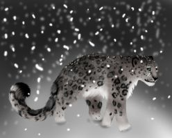 Snow Leopard 2 by cheetahprince