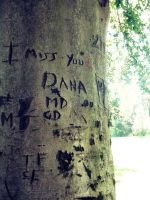 I miss you Dana by lunchboxith