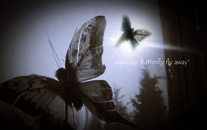 Butterly Wallpapers by Pauline-graphics