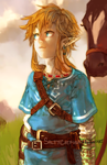 LoZ: WiiU by saltycatfish