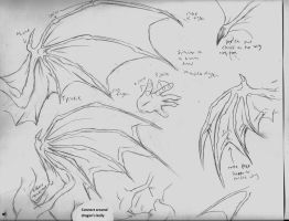 Dragon Wing drawing techniques by Luxray-Insanity
