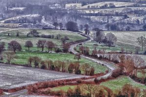 Winding road of St Leonard Wood Sarthe France by hubert61