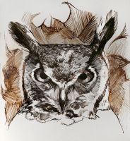 Great Horned Owl by yolque