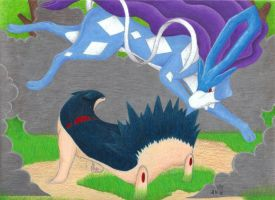 PS: Suicune Vs. Typhlosion by rockingyourstar